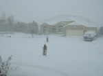 DSCF3508-thumbnail2 コロラドスプリングスの天気予報は当たらない